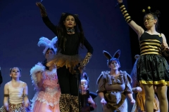 Jungle Creatures from The Jungle of Nool